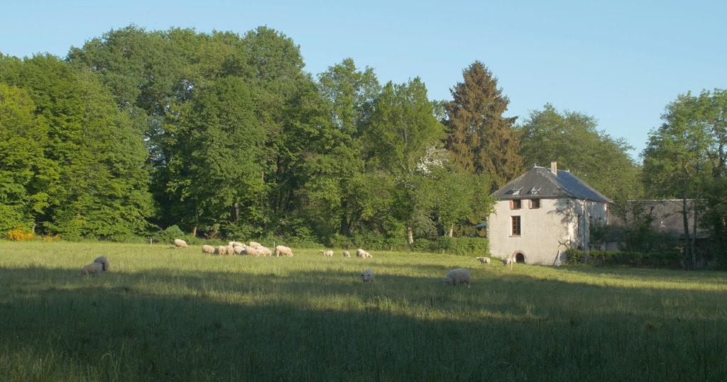 Moulin de Sugy, le Pré de la roue