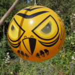 Angry Bird, le gardien des cultures ! - Moulin de Sugy