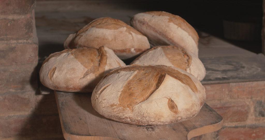 Défournage des pains cuits à point - Moulin de Sugy